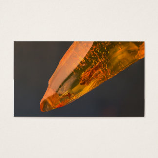 Amber inclusion | business card