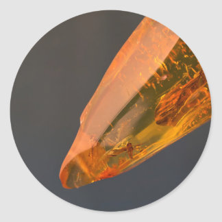 Amber inclusion | round sticker