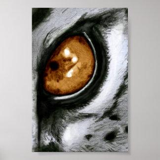 Amber Leopard Eye Poster