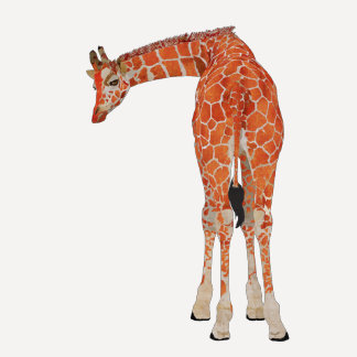 Amber Peeking Giraffe T-shirts
