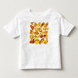 Amber stone inclusions toddler T-Shirt