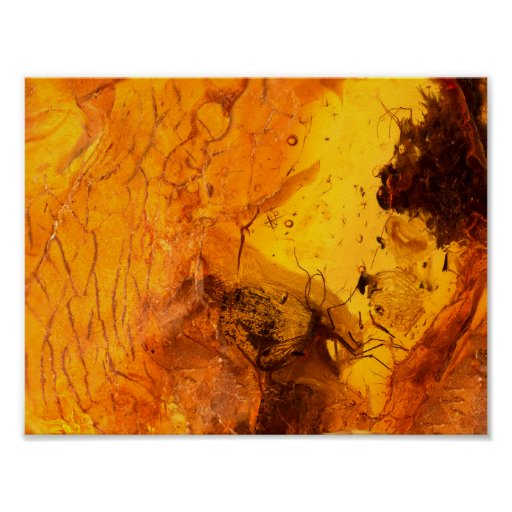 Amber stone texture background poster