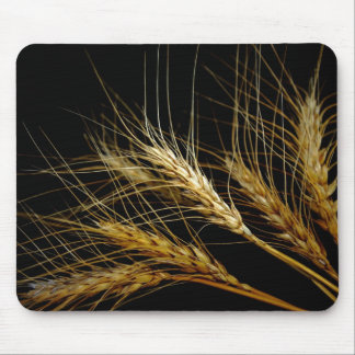 Amber Waves of Grain Wheat Mouse Mat
