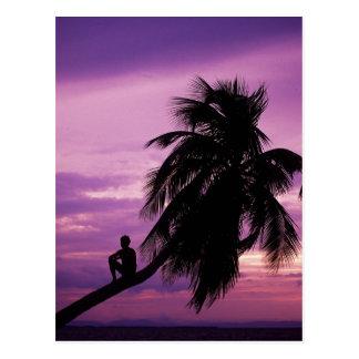 Ambergris Caye, Belize, Central America. Postcard