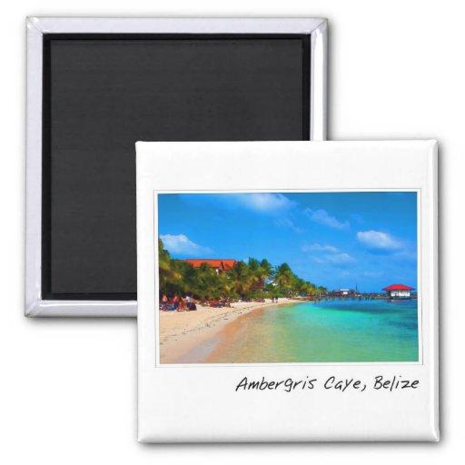 Ambergris Caye San Pedro Belise Square Magnet