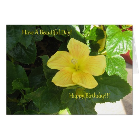 Ambers Yellow Hibiscus Birthday Card