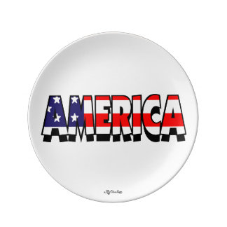 America! 8.5 PLATE
