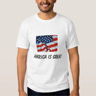 AMERICA IS GREAT SHIRT