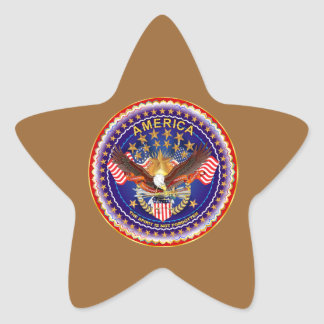 America Is Not Forgotten Star Only See Notes Star Stickers