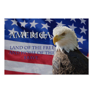 America Land of the Free Poster