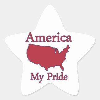 America map designs stickers