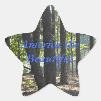 America the beautiful star sticker