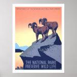 America Vintage Travel Print