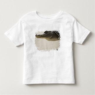American Alligator, Alligator Toddler T-Shirt
