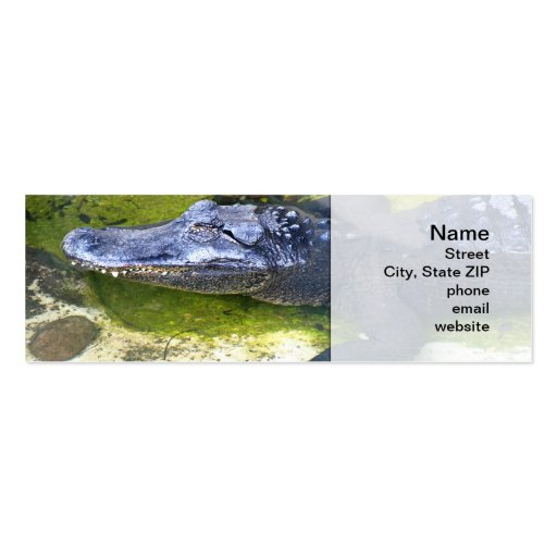 American Alligator Business Card Templates