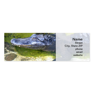 American Alligator Pack Of Skinny Business Cards
