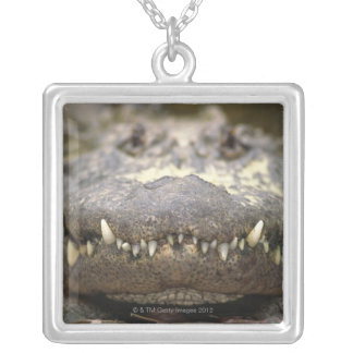 American alligator silver plated necklace