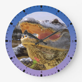 American Alligator Wall Clock