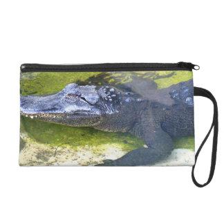 American Alligator Wristlet