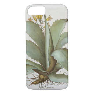 American Aloe: Aloe Americana, from the 'Hortus Ey iPhone 8/7 Case