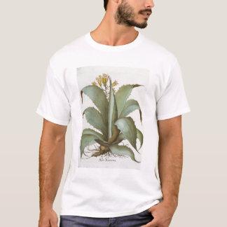 American Aloe: Aloe Americana, from the 'Hortus Ey T-Shirt