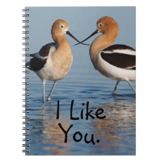 American Avocet Pair Notebook