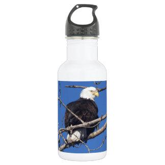 American Bald Eagle 532 Ml Water Bottle