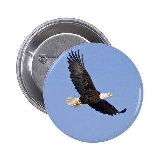 American Bald Eagle 6 Cm Round Badge