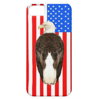 American Bald Eagle And American Flag iPhone 5 Cover