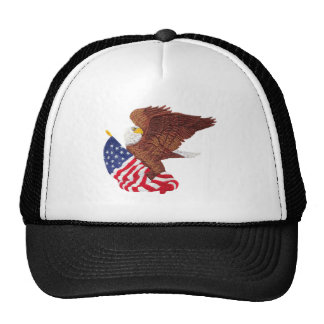 American Bald Eagle and the American Flag Cap