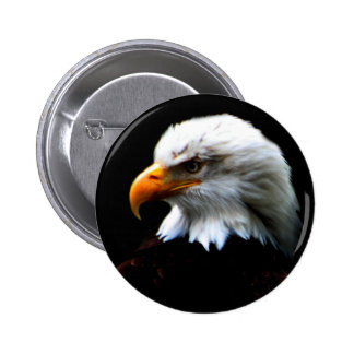 AMERICAN BALD EAGLE 6 CM ROUND BADGE