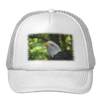 American Bald Eagle Baseball Hat