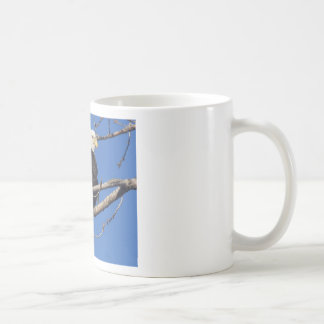 American Bald Eagle Basic White Mug