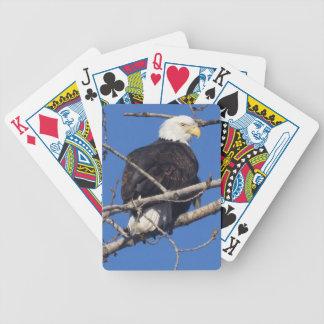 American Bald Eagle Bicycle Poker Deck