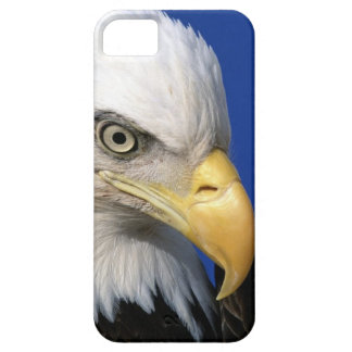 American Bald Eagle Bird Barely There iPhone 5 Case