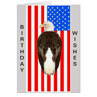 American Bald Eagle Cards