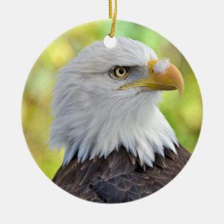 American bald eagle christmas ornament