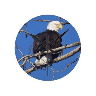 American Bald Eagle Round Wall Clock
