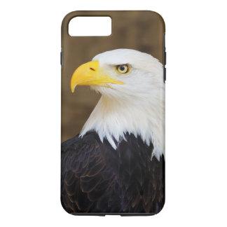 American Bald Eagle Haliaeetus Leucocephalus iPhone 7 Plus Case