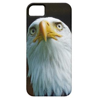American Bald Eagle Head 001 2.2 iPhone 5 Case