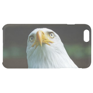 American Bald Eagle Head Clear iPhone 6 Plus Case