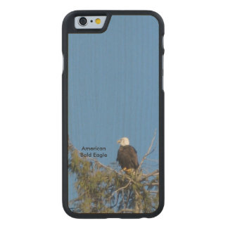 American Bald Eagle iPhone 6 Case Carved® Maple iPhone 6 Slim Case
