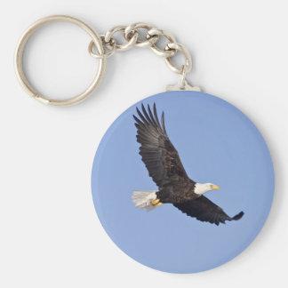 American Bald Eagle Key Ring
