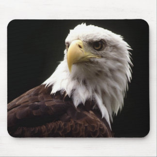 American Bald Eagle Mouse Mat