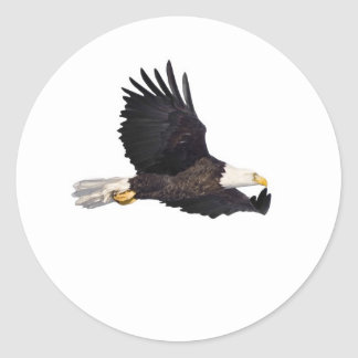 American Bald eagle Round Sticker
