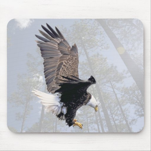American Bald Eagle Symbol Of The United States Mouse Pad