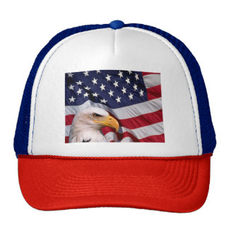 American Bald Eagle with American Flag Cap