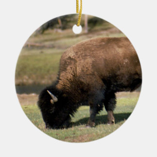 American Bison - Buffalo Round Ceramic Decoration