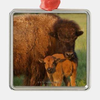 American Bison cow and calf, North Dakota Christmas Ornament