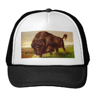 American Bison Hats